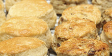 yeast-raised-scones-fruit-plain-gusto-bakery (3)