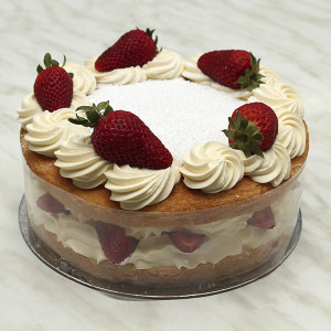 fresh-cream-sponge-gusto-bakery
