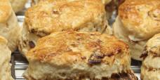 fruit-scones-gusto-bakery